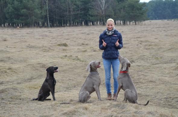 Hundetraining Nathalie Örlecke